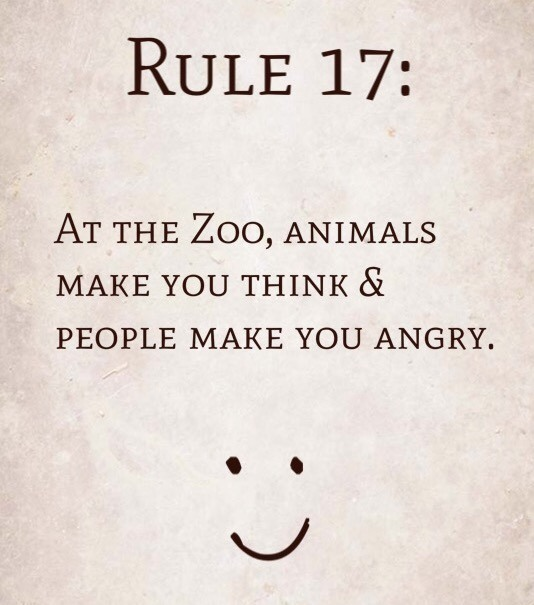 Rule 17: At the Zoo, Animals make you think & People make you angry.