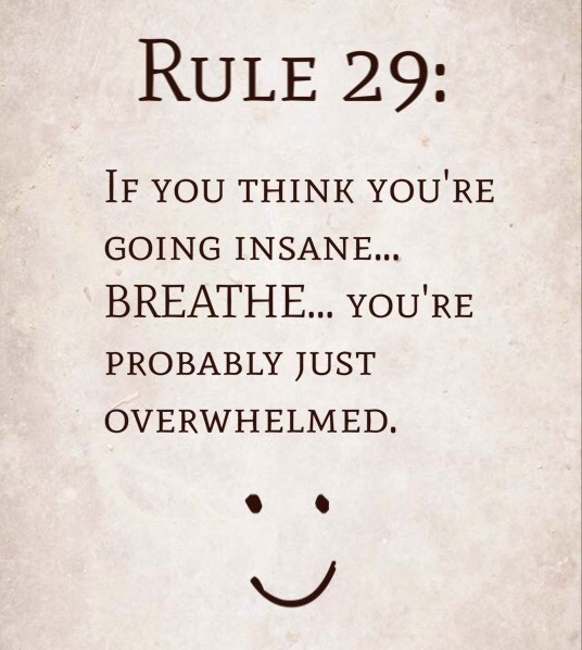 Rule 29: If you think you're going insane…breathe…you're probably just overwhelmed.