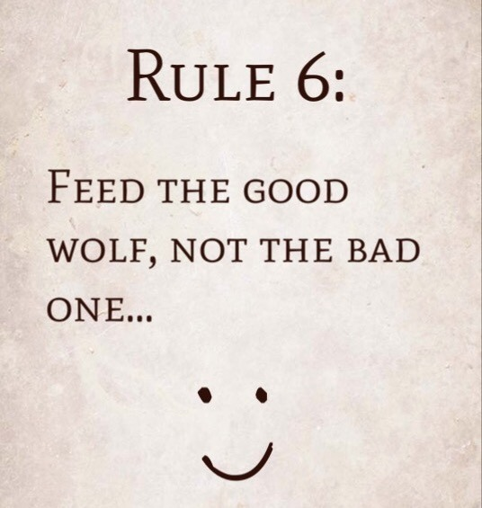 Rule 6: Feed the good wolf, not the bad one…